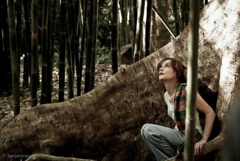 Captive. Isabelle Huppert
