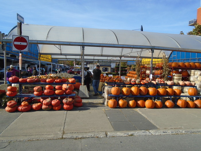 pumpkin weather. Atwater Market. Photo Adam Shaw.