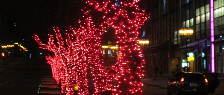 Christmas Lights. Photo Rachel Levine