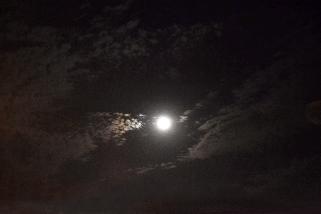 Super Moon. November 2016. Photo Jessica Blair.
