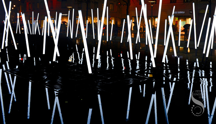 Christophe Mayer - Bamboo Forest. Photo : Illuminart.